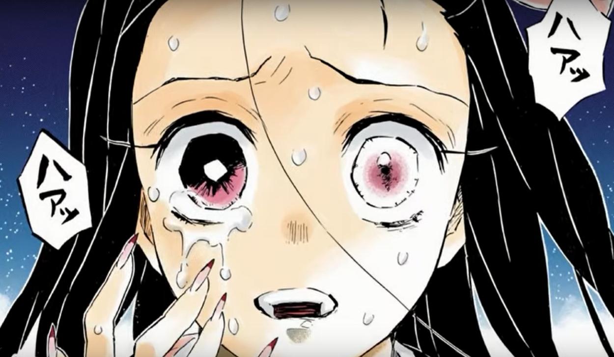 nezuko - 【鬼滅の刃】禰豆子は忍者系のキャラだと思ってた